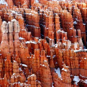 Bryce Canyon Spiers