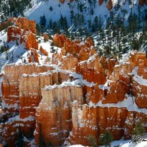 Bryce Canyon Winter