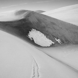 Snow Patch Dunes