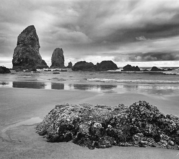 Cannon Beach Crestation BW