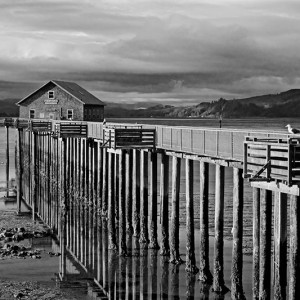 Garibaldi Pier Low Tide BW