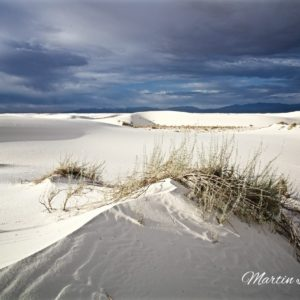 White Sands Ridge