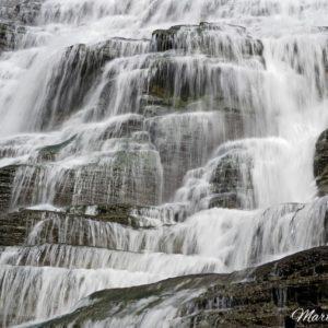 Ithaca Falls Macro