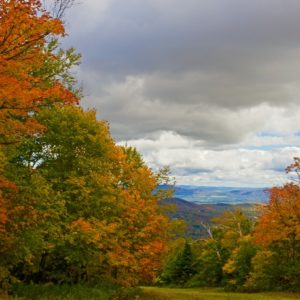 Autumn Vermont Vista