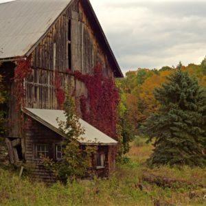 Vermont Colchester Autumn Barn