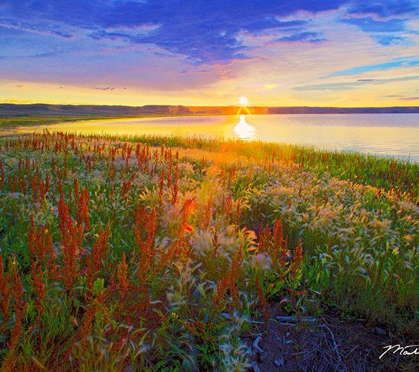 Sunrise On Lake Elwell