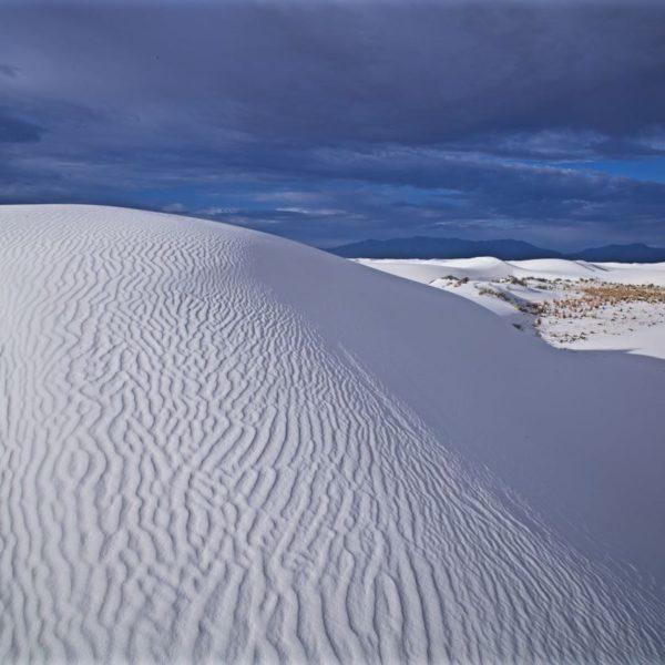 White Sands Patterns