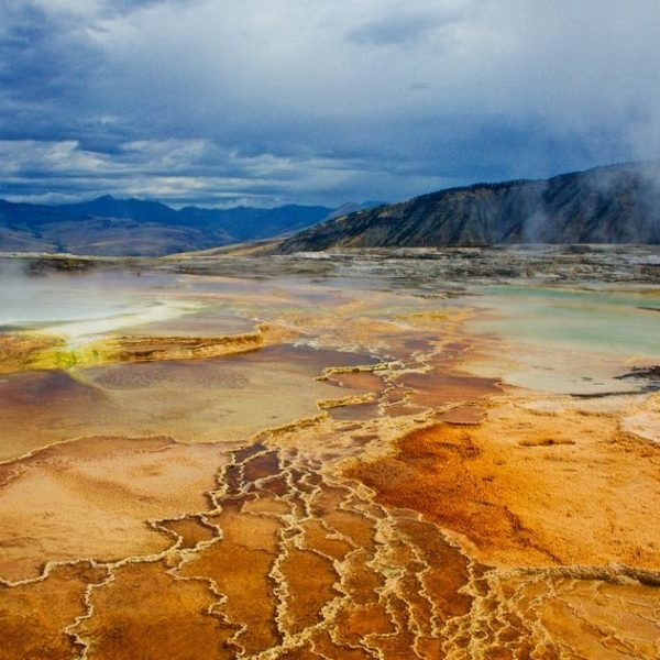 Yellowstone Mammoth Sulphur Spring 1x2