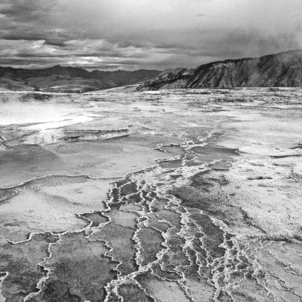 Yellowstone Mammoth Sulphur Spring BW