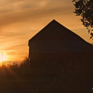 Grandpas Barn Sunset w-Bin