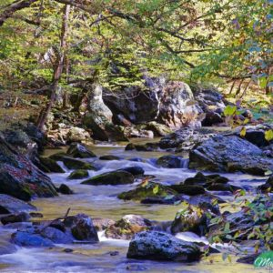 Smokies Laurel Creek Rapids