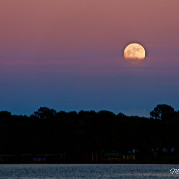 Lake Eustis Moonrise