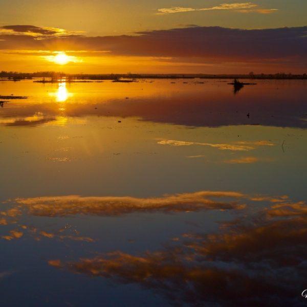 Emeralda Sun On The Water