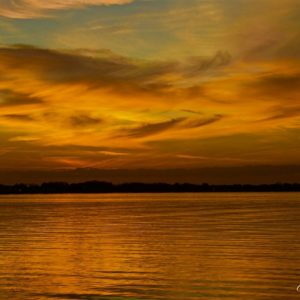 Lake Dora Winged Sunset