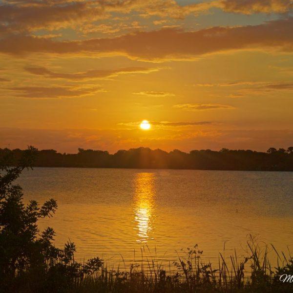 Lake Eustis Sunrise Tiers