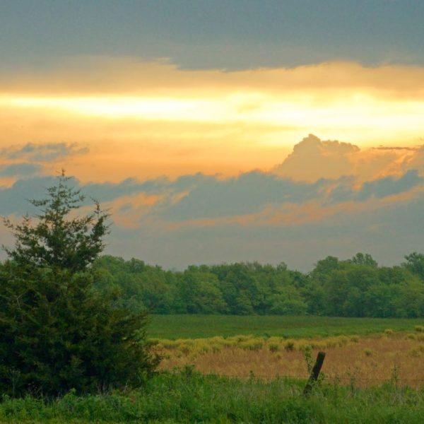 Meadow Sunrise Window Peak