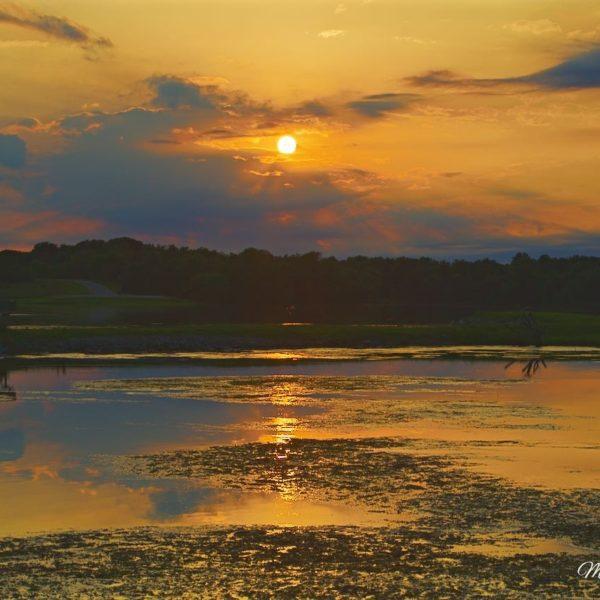 Sever Orange Sunset Reflections