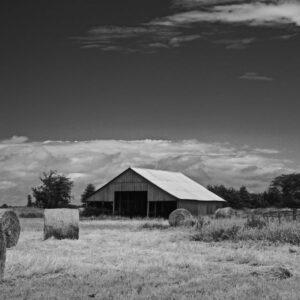 Hay To Barn Black And White Vista