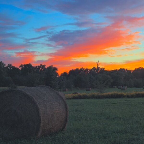 Hay Meadow Fire Rouge Sunset Sky
