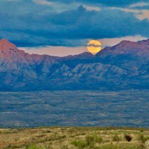 Sonoran Santa Ritas Moonrise