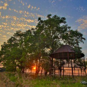 Wire Crib Sunburst Sunset